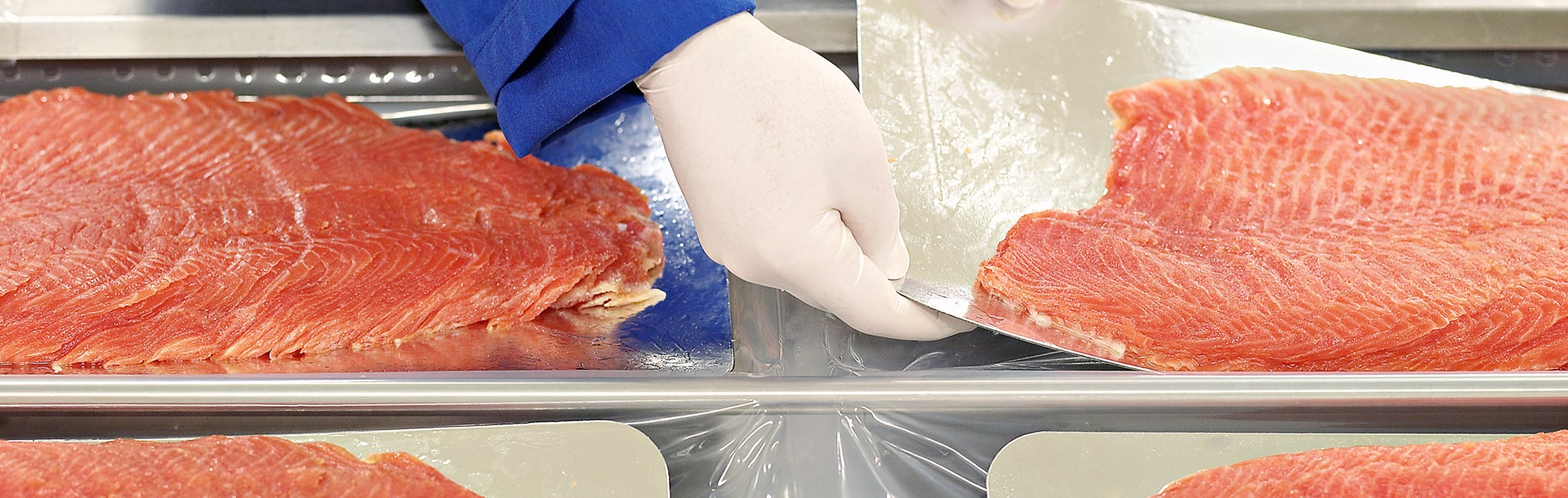fish-packing-6.jpg
